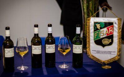 Orto Venezia, il vino tratto dall'acqua