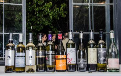 Fisar e Slow Food:Dal cibo al vino le donne si raccontano